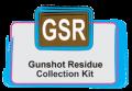 Logo-GSR